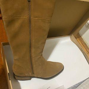Size 12 Ugg